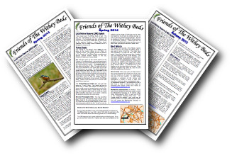Image - newsletters